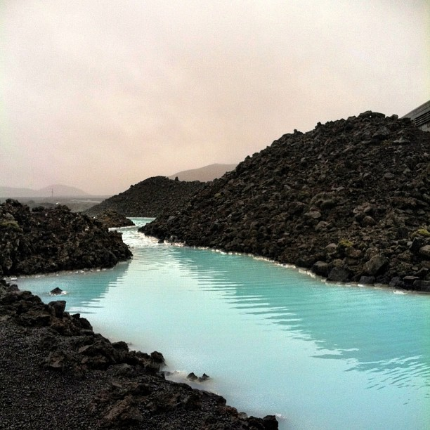 Venturing into the blue lagoon this morning.